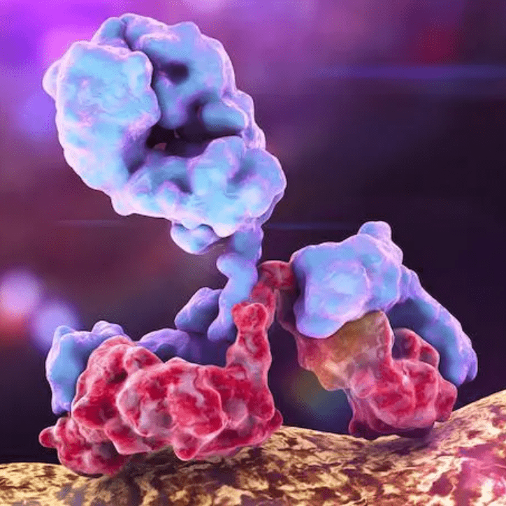 IMMUNOTHERAPY CANCER TREATMENT